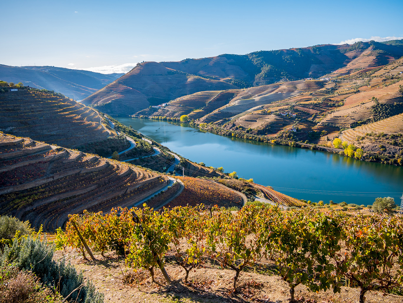 4) Discover the Douro River Valley – a UNESCO World Heritage Site