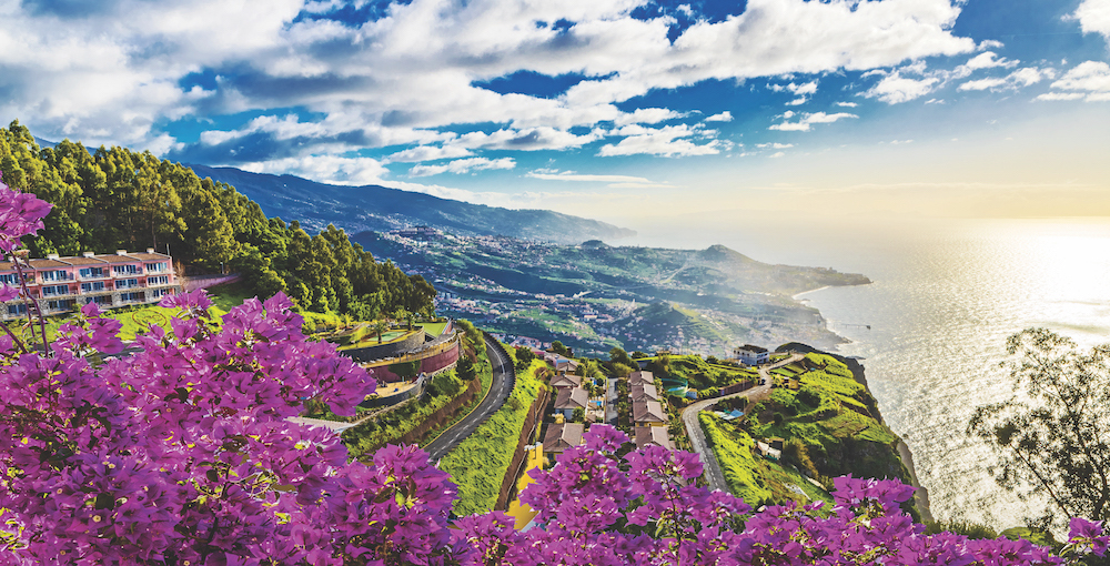 Beautiful Madeira in bloom