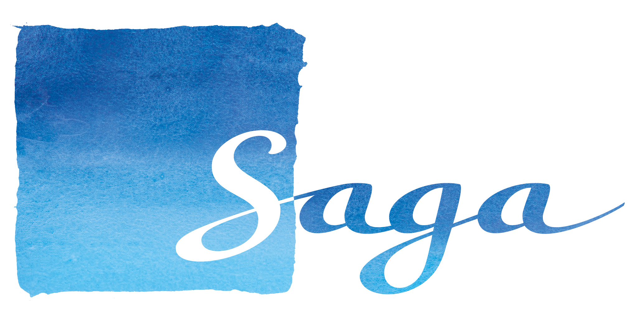 Saga Net Worth