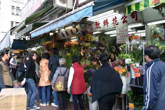 Kowloon flowermarket6