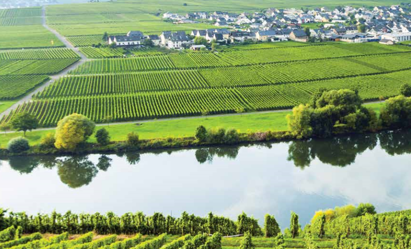 Rhine and Moselle rivers