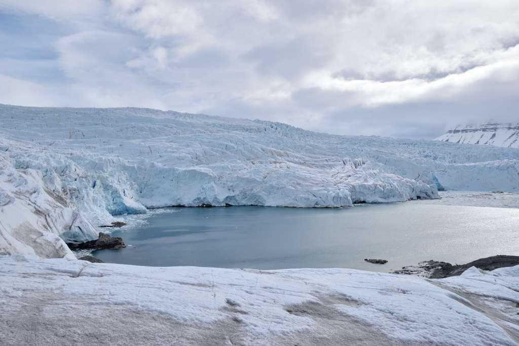 Arctic - R Allan