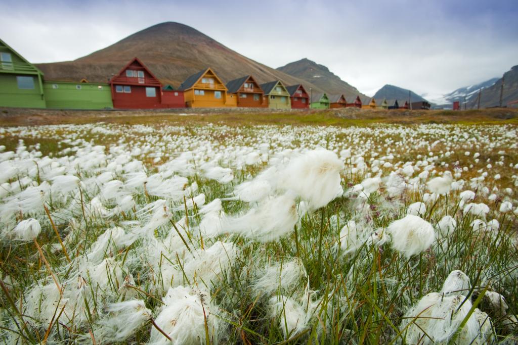 Colourful Architecture in Longyearbyen - David Slater