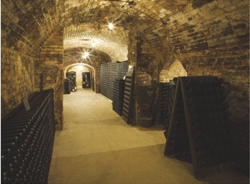 Champagne - caves