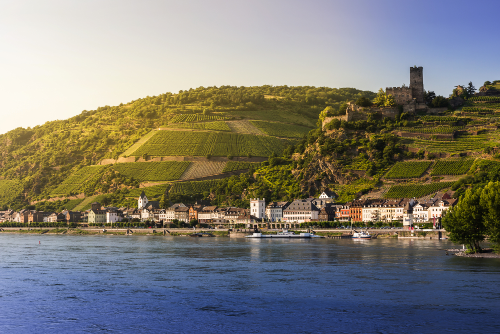 Cruise along the rhine