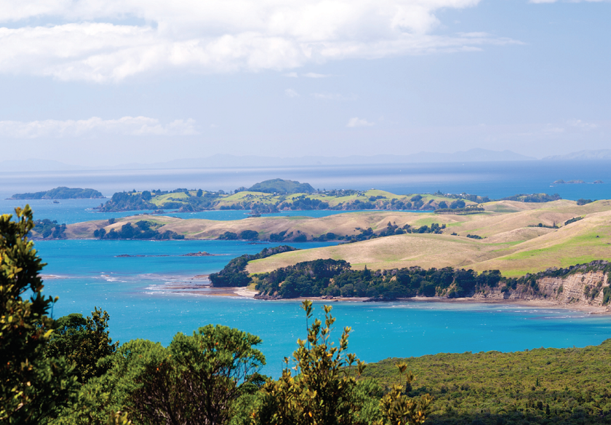 Rangitoto island - New Zealand
