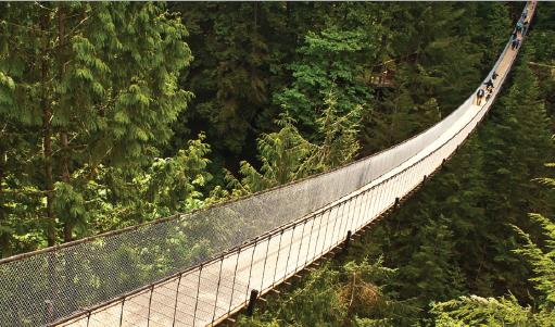 Capilano bridge - Vancouver