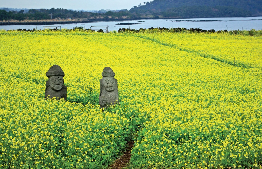Grandfather statues - Jeju island