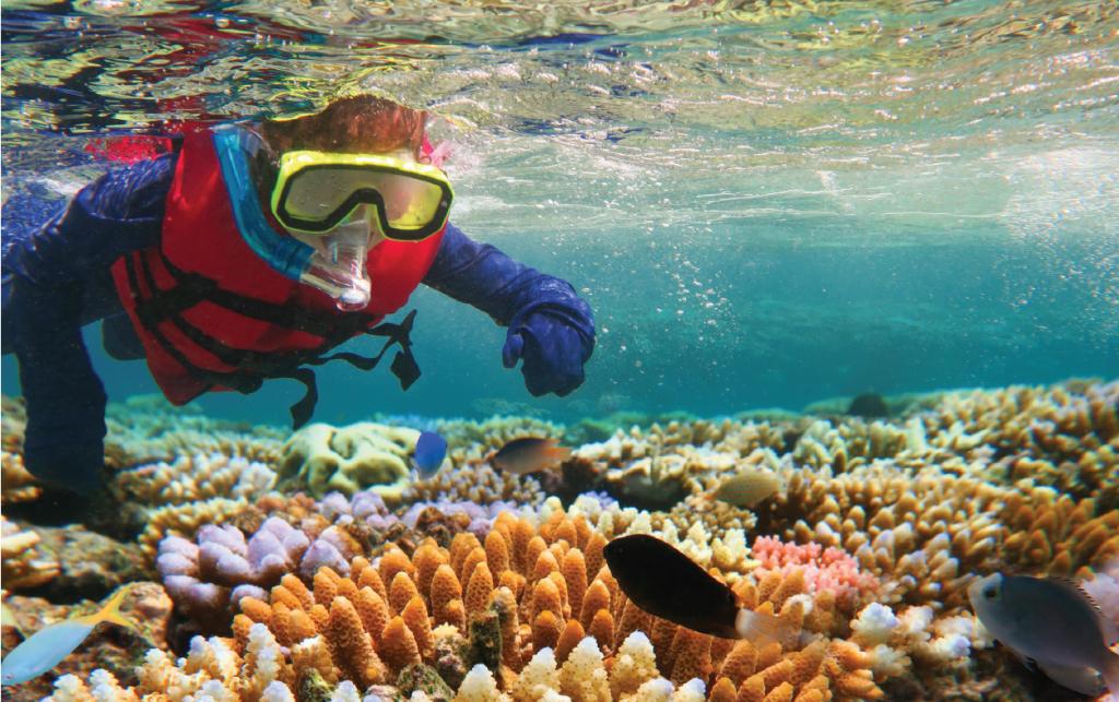 Children - snorkeling