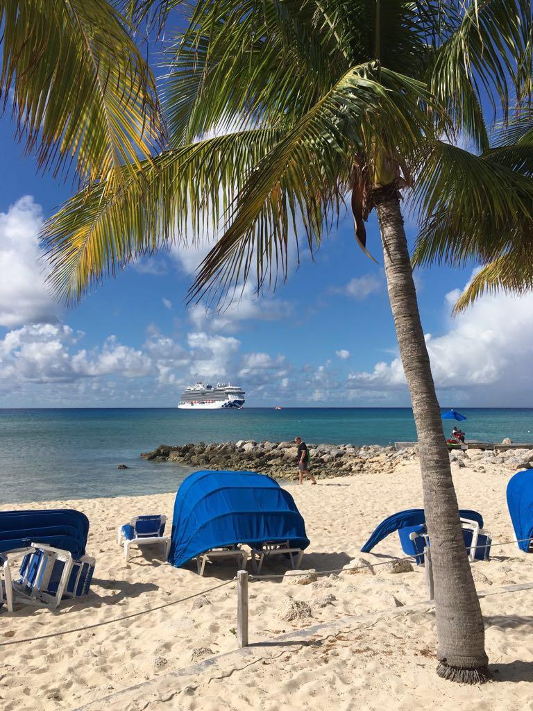 Caribbean, tropical, cruise, parrots