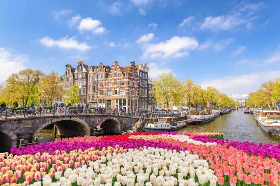 Amsterdam Netherlands, city skyline at canal waterfront with tulips