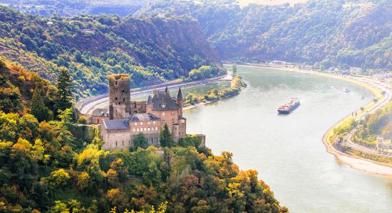 Rhine river cruise with medieval castles