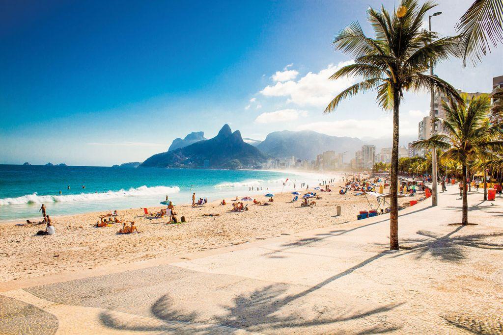 Palms and Two Brothers Mountain on Ipanema beach Rio de Janeiro