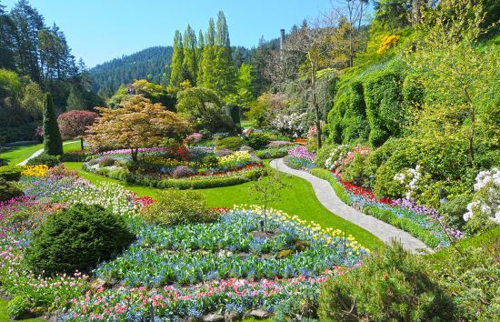 Lawn and flower beds in Butchart gardens in Victoria, Canada
