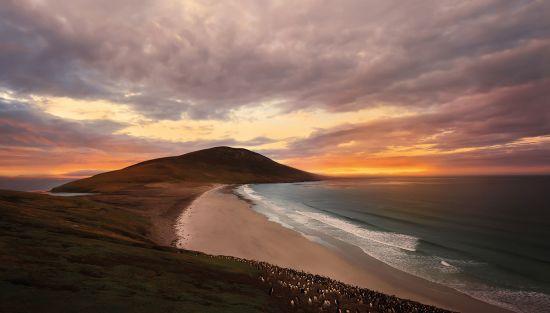 Falkland Islands' deserted beach