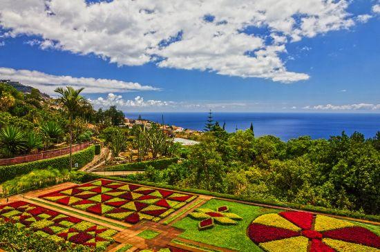 Lush Madeira botanical gardens in summer