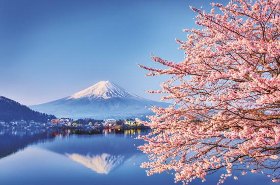 Jetline Cruise japan cruise