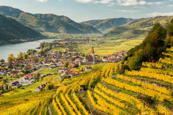 Danube river cruise: Weissenkirchen Wachau Austria in autumn colored leaves and vineyards on a sunny day