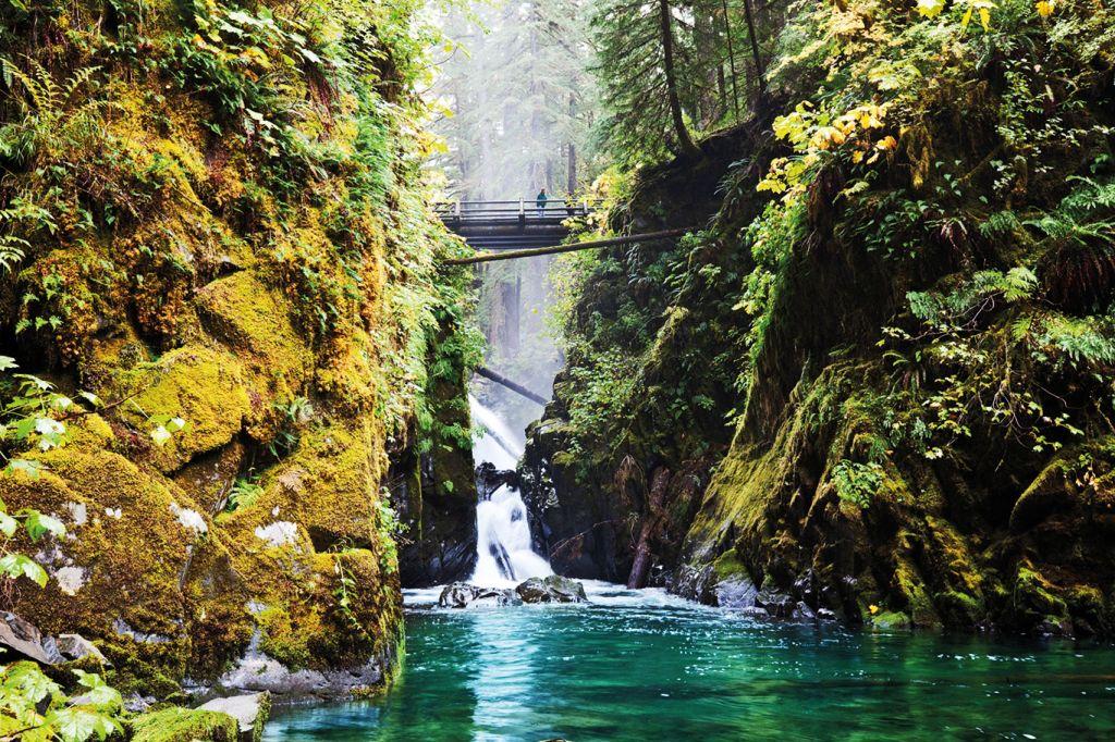 Washington State: Olympic National Park