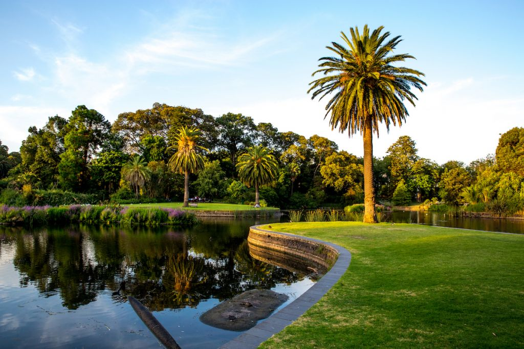 Melbourne Royal Botanic Garden