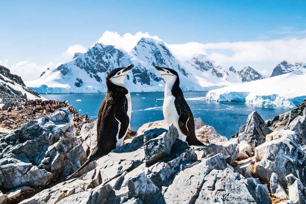 World cruises: Silversea