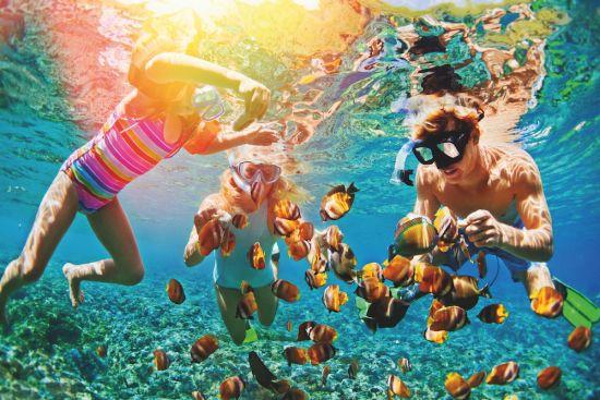 Snorkelling shore excursion