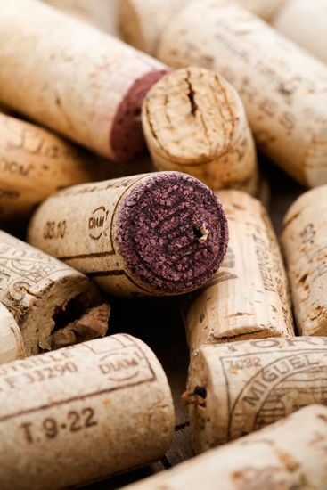 River cruise Bordeaux France: wine corks