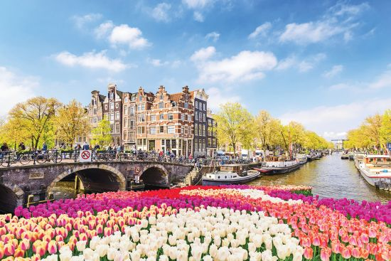 European river cruises: Netherlands tulips